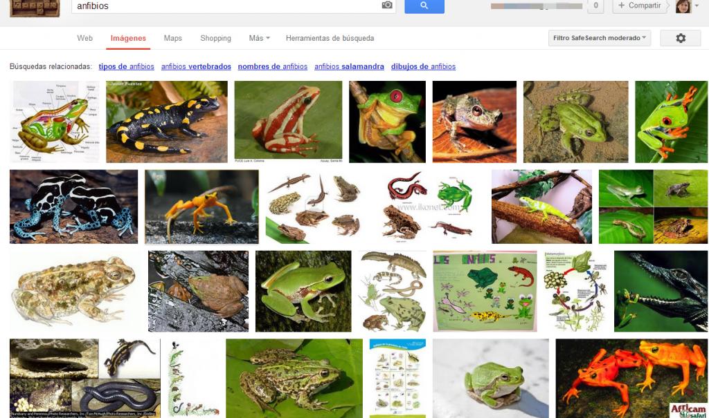 buscar imágenes Google search