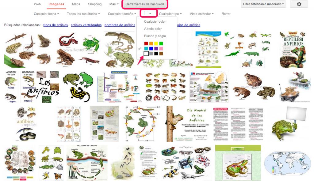google search filtrar imagen por color