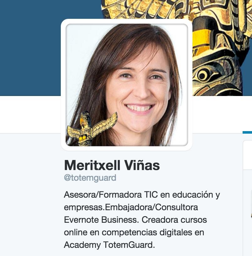 Meritxell_Viñas___totemguard____Twitter